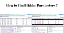 Find Hidden parameters