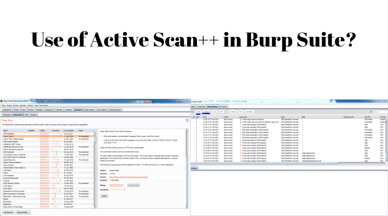 Use of Active Scan++ in Burp Suite?