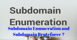 Subdomain Enumeration and Subdomain Bruteforce ?